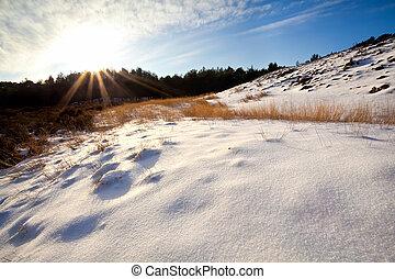 太陽光線, 上に, 雪, 丘
