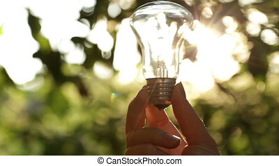 太陽, によって, 電球