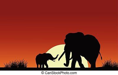 太陽, シルエット, 象