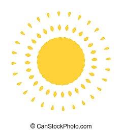太陽, ベクトル