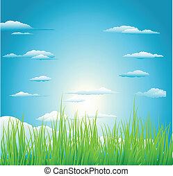 太陽, 上に, 草, 緑のフィールド