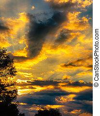 太陽, 入浴する, 雲, 金, ライト, 上昇