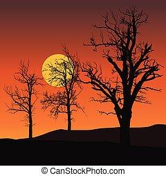 太陽, -, 木, 月, ベクトル, 死んだ, 背景, 下に, オレンジ, ∥あるいは∥, 空