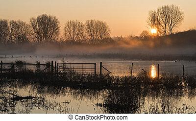 太陽, 湖, 日の出, もや, 風景, 白熱