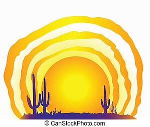 太陽, 砂漠