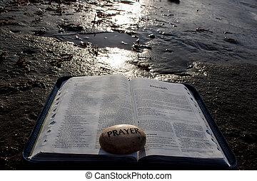太陽, 聖書, 開いた, shining.