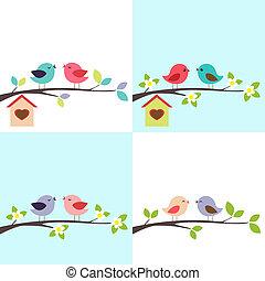 夫婦, ......的, 鳥