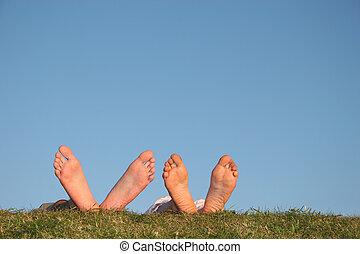 夫婦, 腿, 上, 草