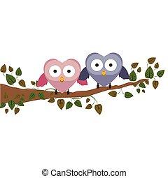 夫婦, 貓頭鷹, 藏品, 翅膀, 上, 分支, 由于, 爬行者