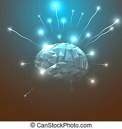 头, 摘要, brain., 人类, 边观点