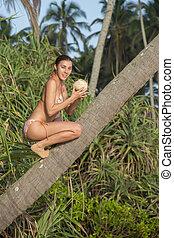 女の子, ココナッツ