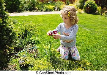 女の子, 保有物の花, 夏, 屋外
