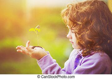 女の子, 保有物, 緑, 若いプラント, 中に, 春, outdoors., エコロジー, concept.