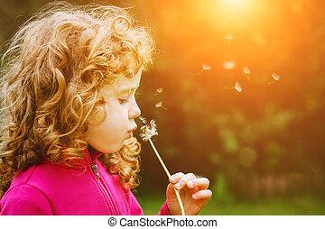 女の子, 吹く, sun., 光線, タンポポ