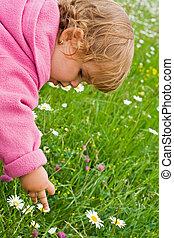 女の子, 花, 盗品