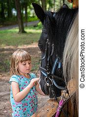 女の子, 頭, 黒い馬, かわいい, なでること
