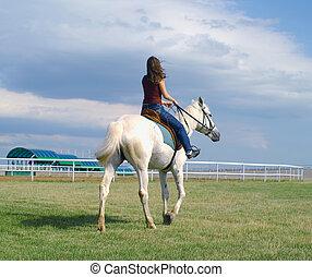 女の子, 馬, 白, 抱擁