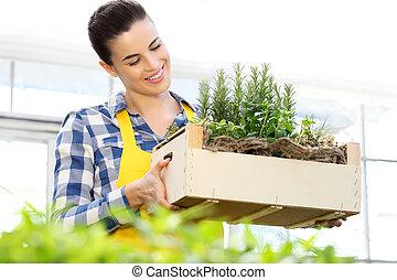女性の保有物, 仕事, 木枠, 芳香がする, 温室, ハーブ, 微笑