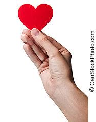女性の手, 保有物, シンボル, -, 赤, heart., 隔離された
