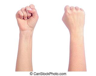 女性手, 数える, -, 握りこぶし