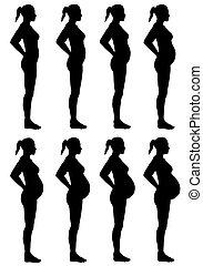 女性, シルエット, 段階, 妊娠