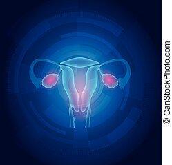 女性, 子宮, 抽象的, 青, 技術, 背景