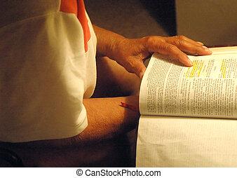 女性, 彼女, bible., 読書