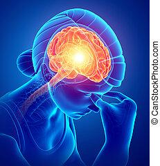 女性, 感じ, 頭痛