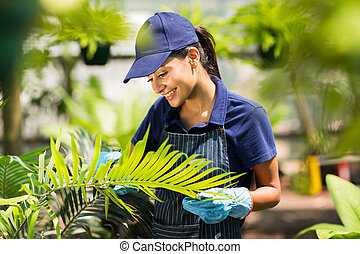 女性, 託児所, 労働者, 温室, 仕事
