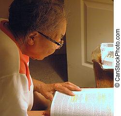 女性, 読書, bible.