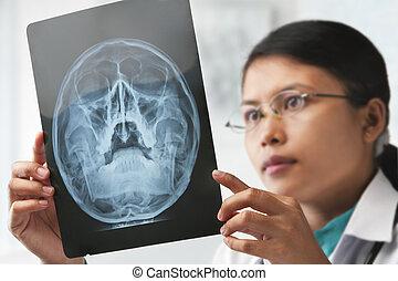 女性 醫生, 檢查, xray, 圖像