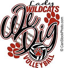 女性, wildcats, バレーボール