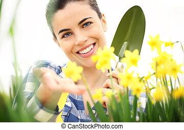 女, 庭, 取得, 春, スイセン, 微笑, 花, 心配