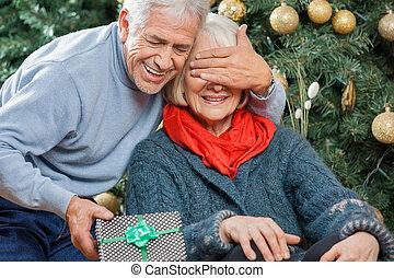 女, 意外, 贈り物, シニア, クリスマス, 人