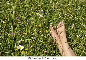 女, 牧草地, フィート, 若い, あること
