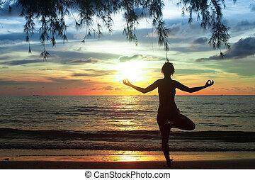 女, 練習する, 湾, 若い, の間, シャム, ヨガ, 浜, sunset.