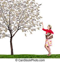 女, 離れて, 手を伸ばす, お金の 木, の上, 背景, 盗品, 白