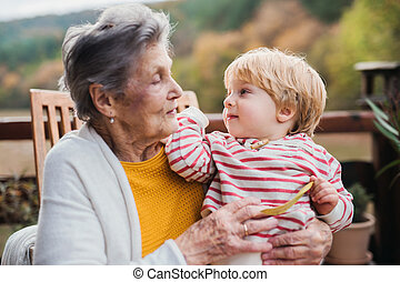 女, great-grandchild, autumn., 年配, 台地, よちよち歩きの子
