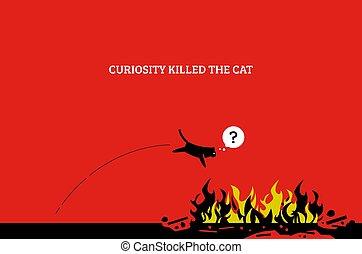 好奇心, 殺す, cat.
