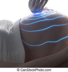 妊娠, 超音波, 概念, 3D, の間
