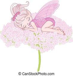 妖精, pixy, 睡眠
