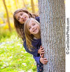 姉妹, 屋外, 女の子, 秋の森林, トランク, 遊び, 子供