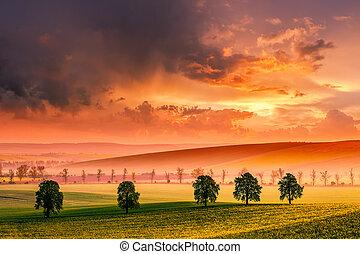 威厳がある, 田園, 空, 風景