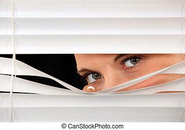 婦女, 偷看, 透過, 威尼斯式 窗帘