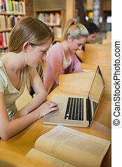 婦女, 學習, 在, the, 圖書館