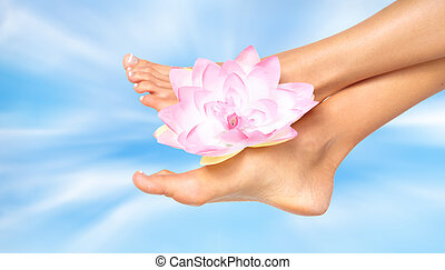 婦女, 英尺, 由于, flower.