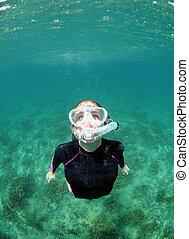 婦女, snorkeling, 水下, 在, 海洋