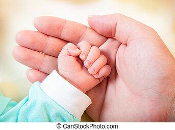 嬰兒手, 在, 母親` s, 棕櫚