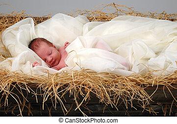 嬰兒耶穌, 在, 馬槽