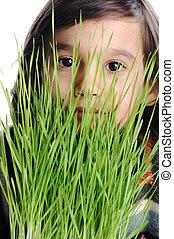 子供, ∥で∥, 草